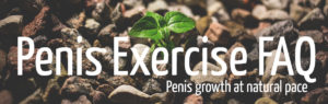 Penis Exercise FAQ