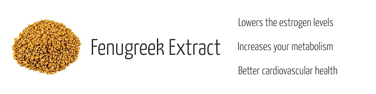 Fenugreek Extract has a positive effect on test levels in your body