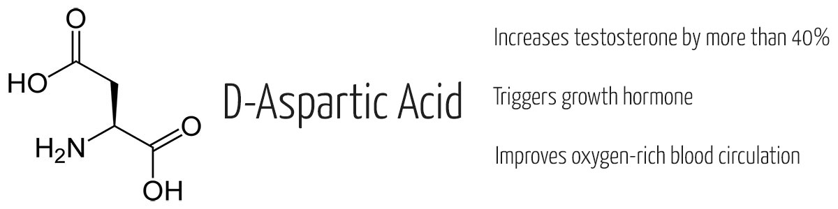 L-aspartic-acid is an easy way to improve your testostrone level